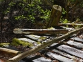 Brückengeländer im Wald