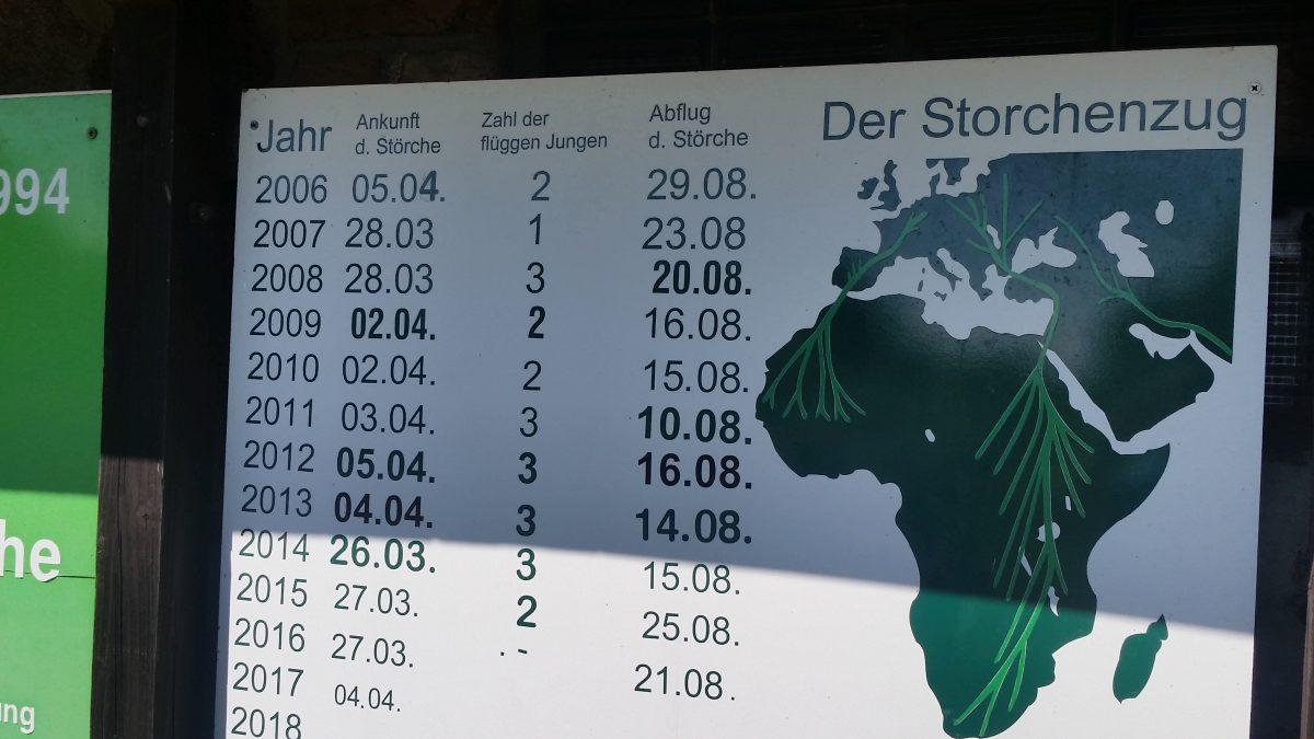 Storchhistorie